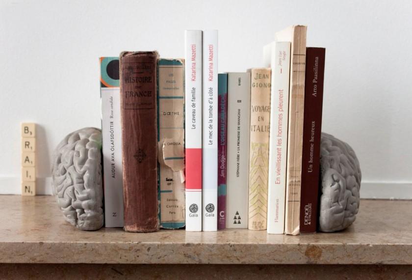 acheter serre livres gray matters lyon b ton meubles valence 26. Black Bedroom Furniture Sets. Home Design Ideas